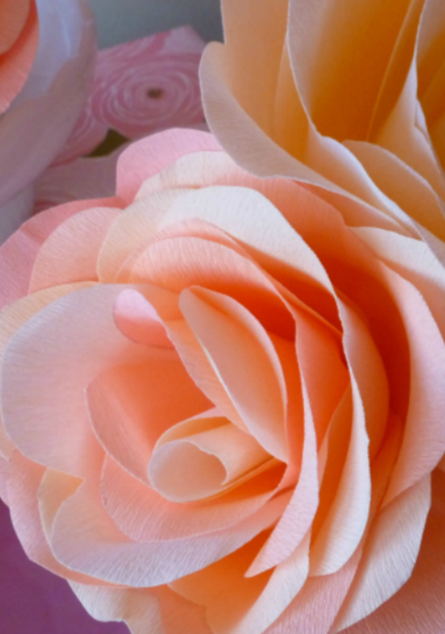 Easy DIY Giant Rose from Crepe Paper