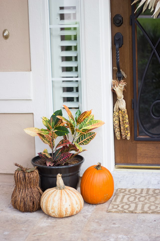 Thanksgiving Wreath Design Improvised