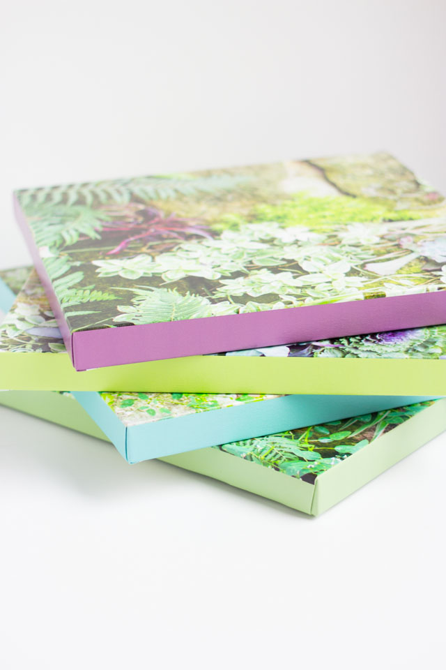 custom canvases with colored borders