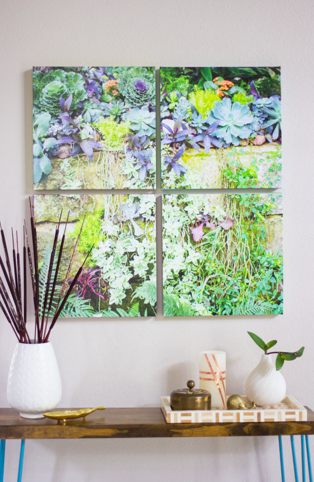 How to make succulent photo wall art #photowallart #photocrafts #succulentart