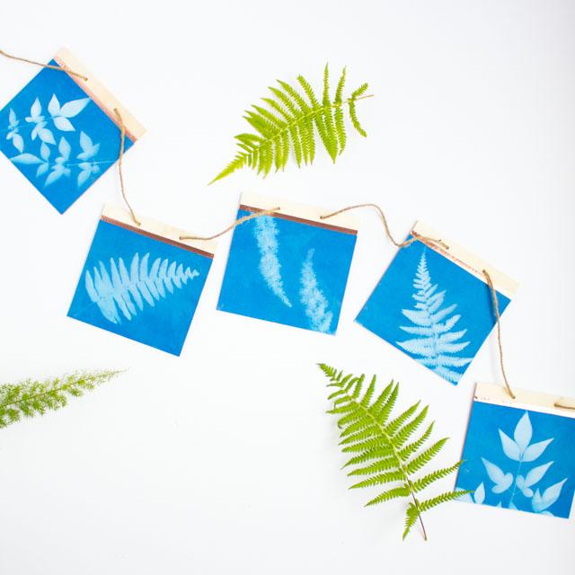 DIY Sun Print Leaf Art