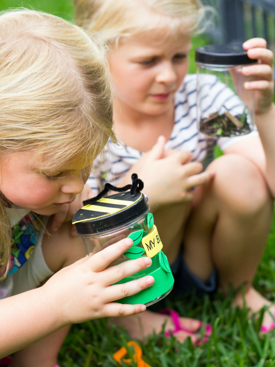 Summer camp All About Bugs activities #summercampactivities #summercamp