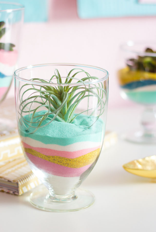 Create these modern terrariums with just colored sand and faux air plants or succulents!