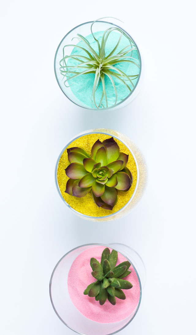 Gorgeous colored sand terrariums
