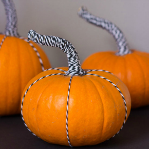 Baker's twine pumpkins - such a fun way to dress up the stems!