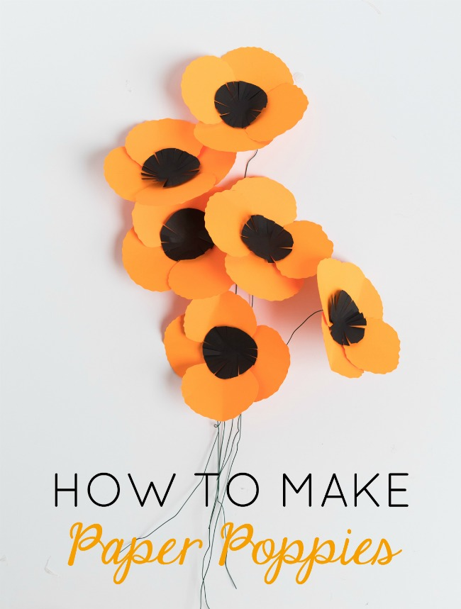 How to make paper poppies