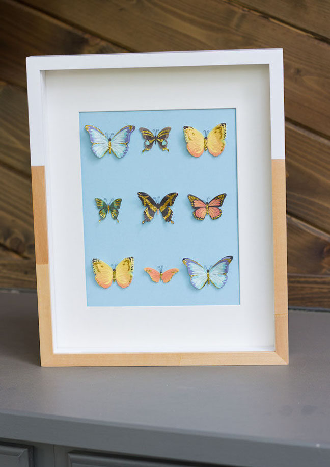 DIY Butterfly Specimen Wall Art