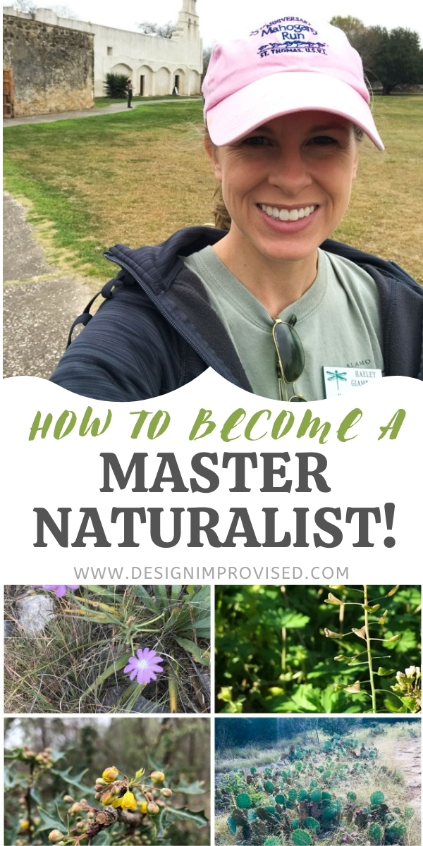 What is a Master Naturalist?
