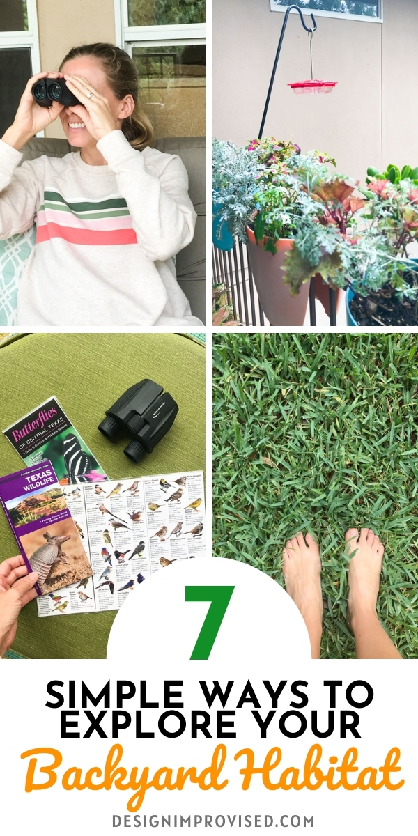 7 Steps to Exploring Your Backyard Habitat