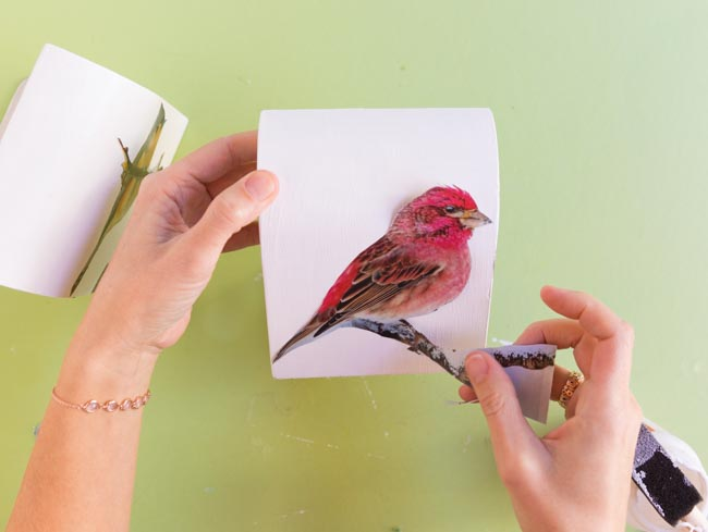 Decorating a bookend with bird pictures
