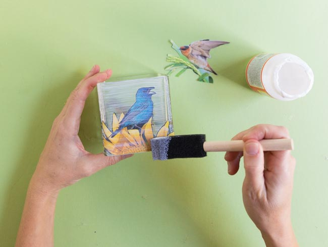 Sealing vase with a coat of Mod Podge