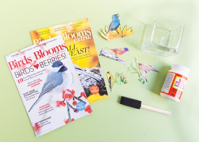 Supplies for DIY decoupage bird vase
