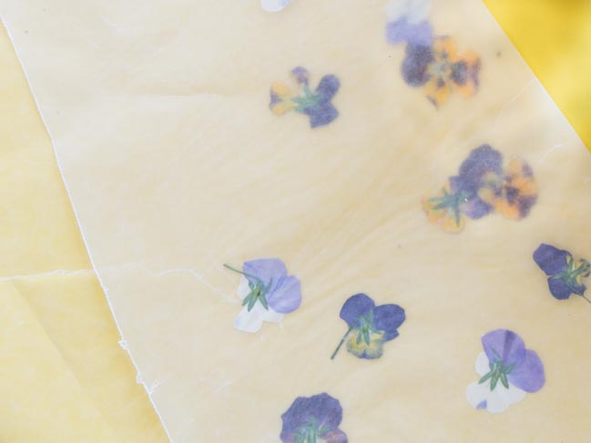 How to press pansies