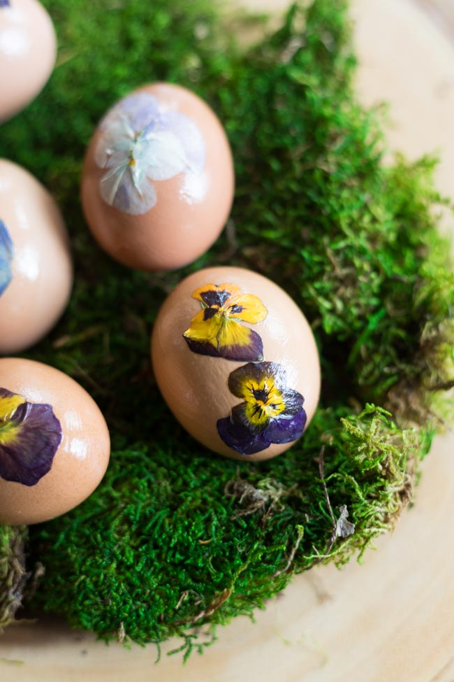 Pressed pansy eggs